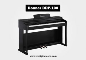 Donner DDP-100 Review