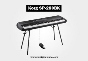 Korg SP-280 Review