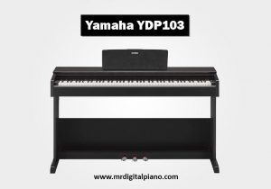Yamaha YDP103 Review