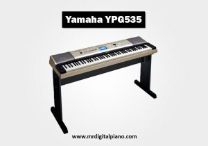 Yamaha YPG535 Review