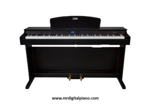 Best 88 Key Digital Piano for Beginners
