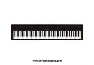 Best Digital Piano for Learners