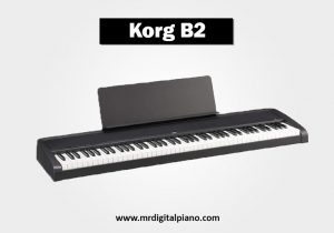 Korg B2 Review