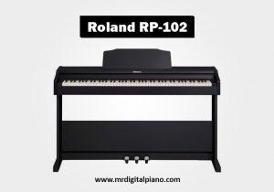 Roland RP102 Review