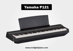Yamaha P121 Review