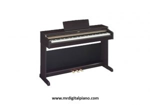 Ideal Digital Piano for Newbies