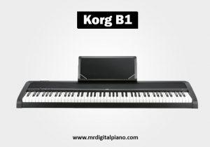 Korg B1
