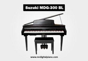 Suzuki MDG-300 BL