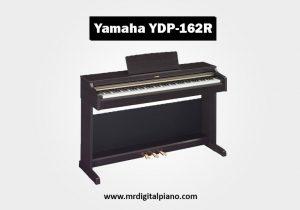 Yamaha Arius YDP162R