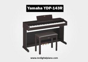 Yamaha YDP143R